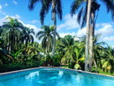 Casa Sol Caraibe Villa for up to 7 people ...under mango trees and palms a Caribbean. Hideaway for people who love the particular On a private hill, embedded in tropical vegetation